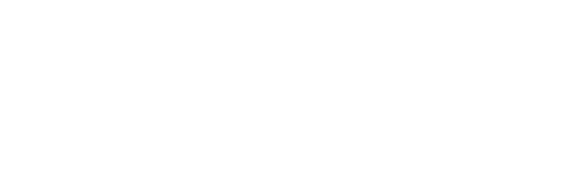 Next Gen Business Solutions